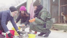 Vrijwilligers die voedsel zetten aan honden in een hondschuilplaats stock video