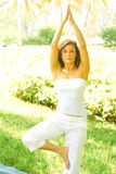 Vrikshasana - Tree Pose. Fitness young woman standing in a yoga tree pose posture at park. Vertical shot Stock Image