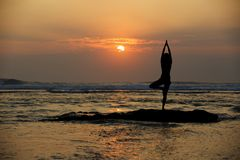 Vrikshasana tree pose from yoga Stock Images