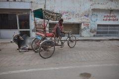 Vrindavan, 22 2016 Październik: Ludzie na ulicie w Vrindavan, fotografia stock