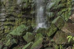 Vrkoc waterfall near river Labe Stock Photos