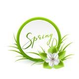 Vårkort med blomman Royaltyfri Fotografi