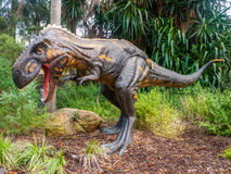 Vråla den Nanotyrannus skärmmodellen i den Perth zoo Royaltyfria Bilder