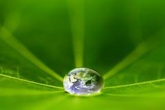 Världen i en droppe av vatten Arkivbild
