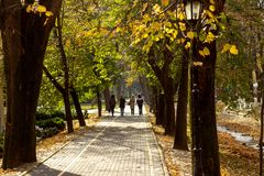 Public park in autumn - Vrnjacka Banja, Serbia. Vrnjacka Banja is a popular tourist destination in Serbia, a place that every year visit a millions of tourist stock photography