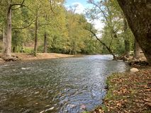 Vroeg Autumn Creek 1 - 10 2018 royalty-vrije stock afbeelding