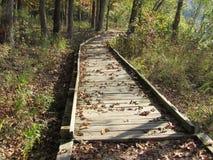 Vroeg Autumn Wooden Pathway door het Bos Stock Afbeelding