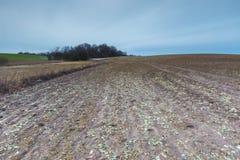 Vroeg de lentelandschap van gebieden onder bewolkte hemel Royalty-vrije Stock Fotografie
