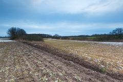 Vroeg de lentelandschap van gebieden onder bewolkte hemel Stock Foto's