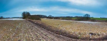 Vroeg de lentelandschap van gebieden onder bewolkte hemel Royalty-vrije Stock Foto's