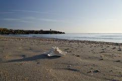 Vroeg in de Ochtend op het strand in Pomorie Stock Afbeeldingen
