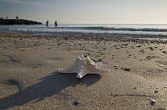 Vroeg in de Ochtend op het strand in Pomorie Royalty-vrije Stock Foto's