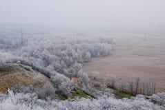 Vroeg de winterlandschap met huis en berijpte installaties en bomen Stock Foto's