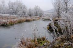 Vroeg de winterlandschap met kleine vijver, berijpte installaties en bomen Stock Foto