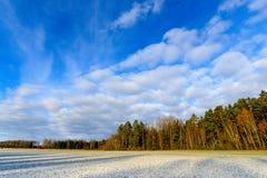 Vroeg de winterlandschap in Zweden Stock Afbeelding