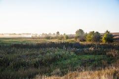 Vroeg ochtend landelijk landschap met mist Royalty-vrije Stock Afbeeldingen
