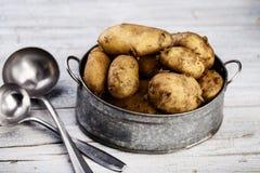 Vroege Aardappels stock fotografie