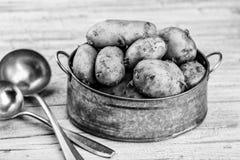 Vroege Aardappels royalty-vrije stock afbeeldingen