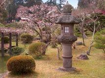 Vroege de lente Japanse tuin stock foto