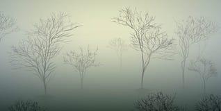 Vroege de lenteochtend in het bos, Maart-aardscène, mistige ochtend, Royalty-vrije Stock Afbeeldingen