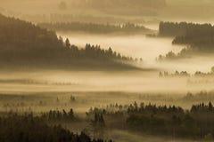 Vroege fogy de herfstochtend op de Tsjechische Oostenrijkse grens Stock Foto's
