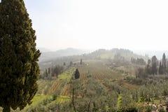 Vroege mistige ochtend Mooi de lentelandschap in Toscanië, Italië, Europa stock foto
