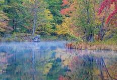 Vroege Ochtend Autumn Scene On The River stock afbeeldingen
