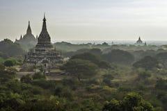 Vroege ochtend in Bagan Stock Fotografie