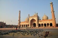 Vroege ochtend in Jama Masjid Royalty-vrije Stock Fotografie