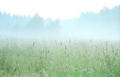 Vroege ochtend in Karelië. Rusland Royalty-vrije Stock Afbeeldingen