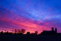 Vroege ochtend op het landbouwbedrijf Stock Foto