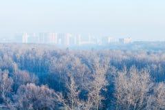 Vroege ochtend over bos en stad in de winter Royalty-vrije Stock Fotografie