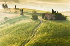 Vroege ochtend in Toscanië Royalty-vrije Stock Fotografie