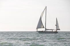 Vroege ochtendzeilboot op de Golf van Mexico Stock Afbeeldingen