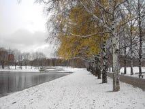 Vroege smeltende sneeuw stock foto