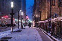 Vroege Sneeuw bij dageraad stock afbeelding