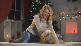 Vrolijk dame en meisje die pret hebben onder het gloeien de tradities van de Kerstboomfamilie stock footage