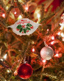 Vrolijk de Krabornament van Kerstmismaryland Stock Afbeelding