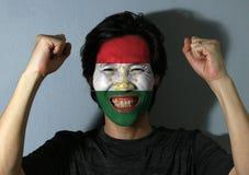 Vrolijk die portret van een mens met de vlag van Tadzjikistan op zijn gezicht op grijze achtergrond wordt geschilderd Het concept royalty-vrije stock afbeelding