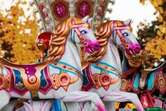 Vrolijk-gaan-rond met paarden Stock Afbeelding