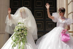 Vrolijk huwelijk Stock Afbeelding