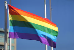 Vrolijk Pride Flag in de Zon Royalty-vrije Stock Foto's