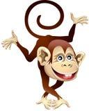 Vrolijke aap Stock Foto