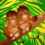 Vrolijke apen Stock Afbeelding