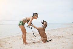 Vrolijke Aziatische jonge vrouw die in eyeglases met haar hond op het strand spelen stock foto's