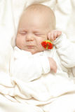 Vrolijke baby Stock Foto