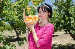 Vrolijke donkerbruine het plukken vruchten Stock Foto's