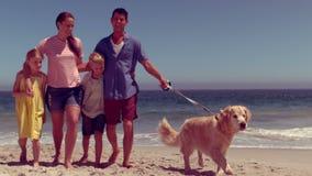 Vrolijke familie die samen spelen stock footage