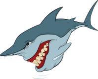Vrolijke haai. Beeldverhaal Stock Afbeelding