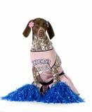 Vrolijke hond Royalty-vrije Stock Afbeelding